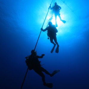 Divers ascending on a line advanced open water divers Canary islands diving pirates tenerife